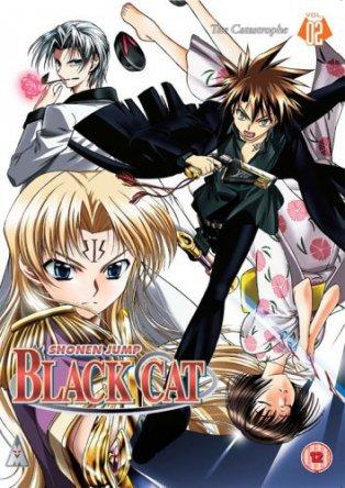 Чёрный Кот / Black Cat (2005)