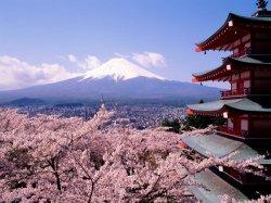 Как катастрофа в Японии отразится на мире аниме и манги?
