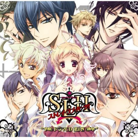 S.L.H (Stray Love Hearts)  Любовь потерянных сердец
